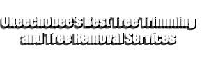 Okeechobee's Best Tree Trimming and Tree Removal Services
