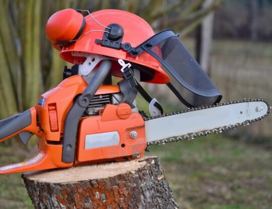 Commercial Tree Trimming Services-Okeechobee's Best Tree Trimming and Tree Removal Services