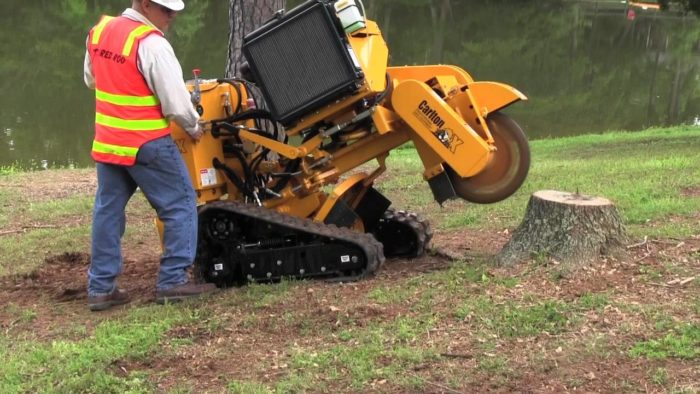 Stump Grinding - Okeechobee's Best Tree Trimming and Tree Removal Services
